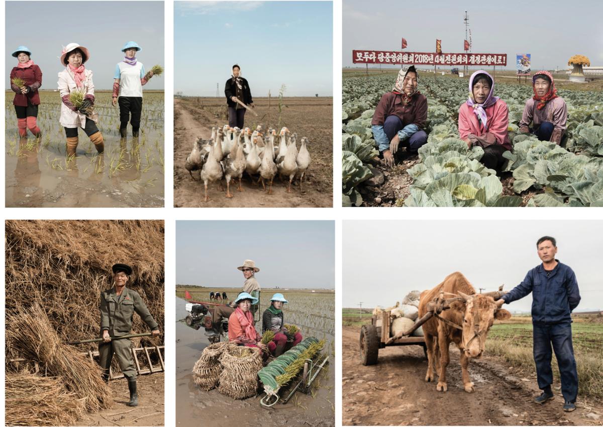 MAP Corée du Nord 2017, Travaux des champs Photographie Fine Art print sur papier Hahnemühle ©STEPHAN GLADIEU