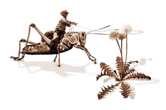Grasshopper Boy III, 2014 Impression Ink-Jet sur papier à dessin  40 x 60 cm ©Ghyslain Bertholon