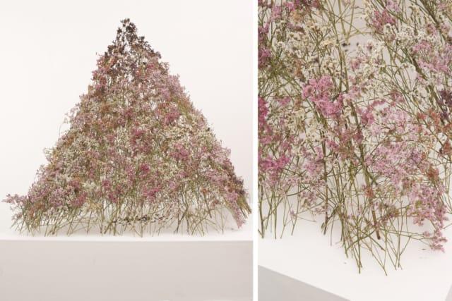 Pyramide, 2018 Dentelle de fleurs de statices séchées et brulées 115 x 95 cm, DA18-25 ©Duy Anh Nhan Duc