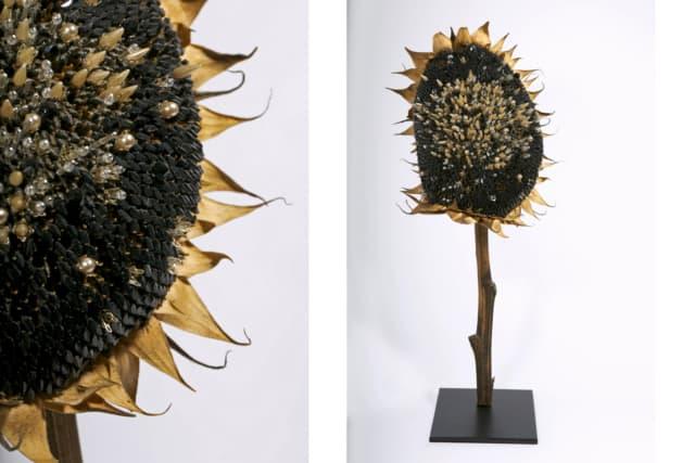 Soleil Noir, 2018 Fleur et graines de tournesol séchées, perles de verre, nacre H 45 cm, DA18-23 ©Duy Anh Nhan Duc