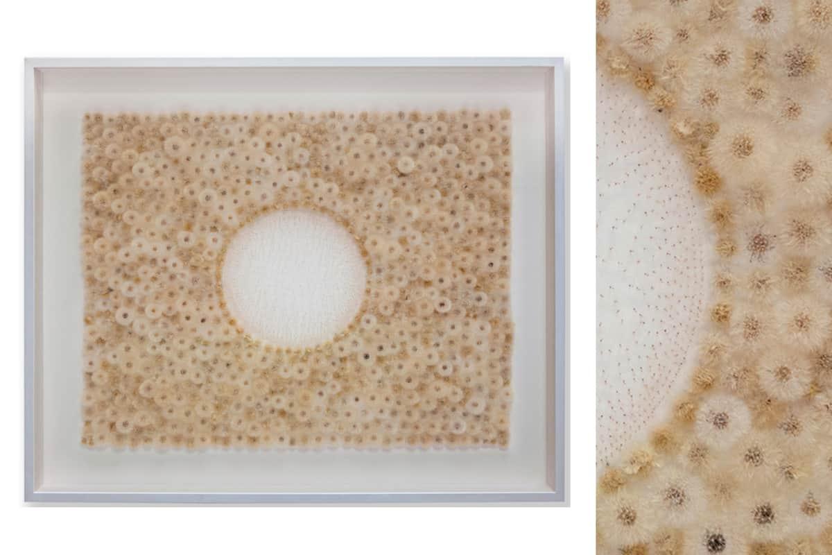 Souffle, 2016 Pissenlits, aigrettes de pissenlit et feuille d'or 120 x 100 x 10 cm, DH-38 ©Duy Anh Nhan Duc