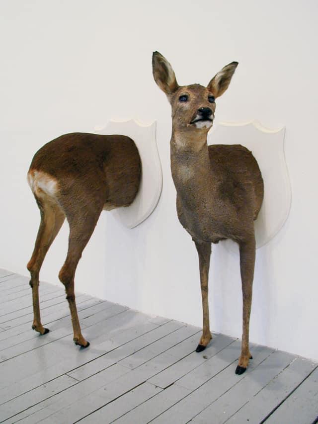 Chevreuil (dyptique), 2012 Troché de face, Poézies animales Sculpture en mousse polyuréthane, cuir de chevreuil sur écusson en bois laqué 95 x 50 x 50 cm ©Ghyslain Bertholon
