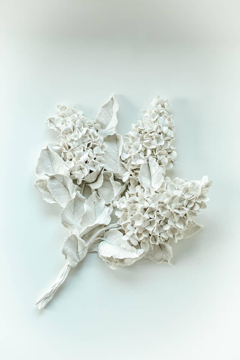 Hortensia, porcelaine ©Virginie Boudsocq Photographie ©Benjamin Ranger