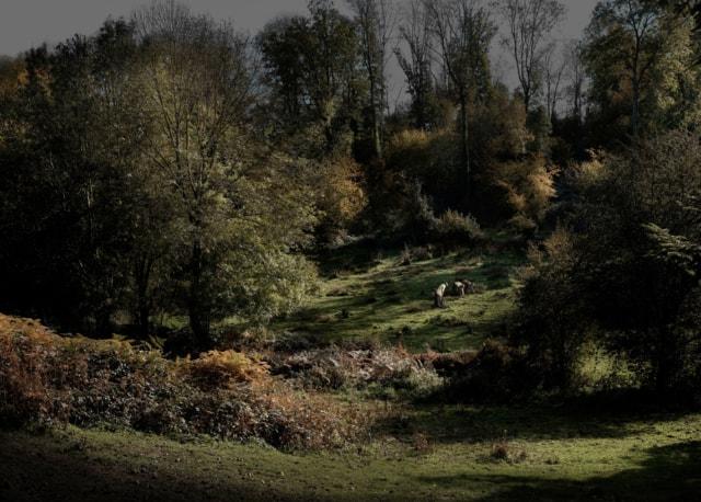 Hommage à Millet, 2013 série Hommage ©Nicolas Dhervillers