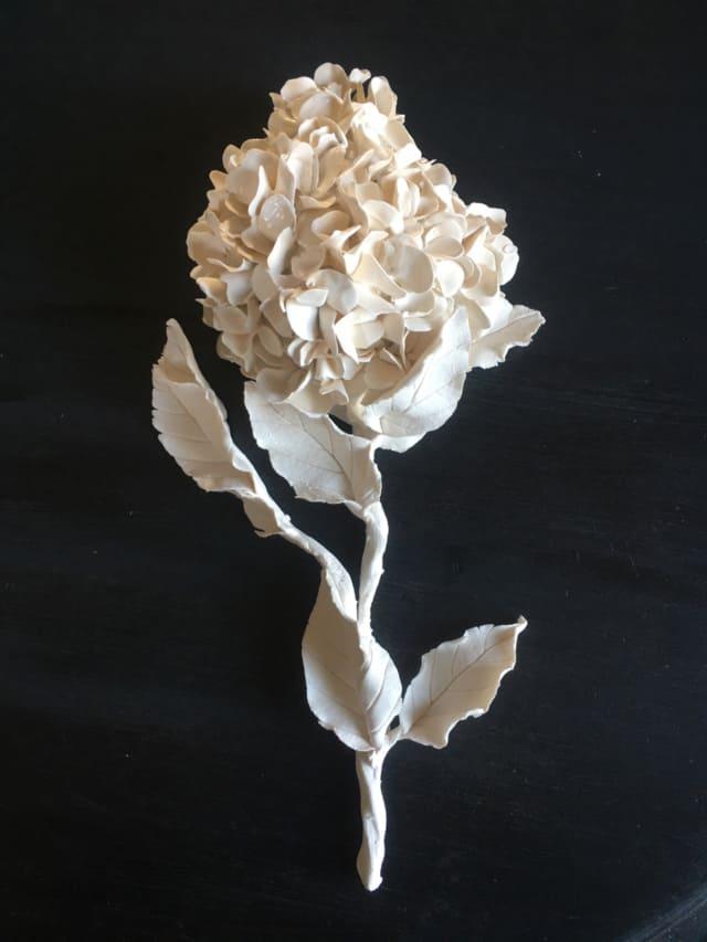 Sculpture branche hortensia, porcelaine VB2002 ©Virginie Boudsocq