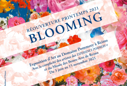 Blooming-couv-web21