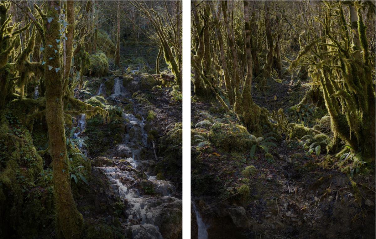 River 2 - Diptyque 110 x 150 cm ©Nicolas Dhervillers