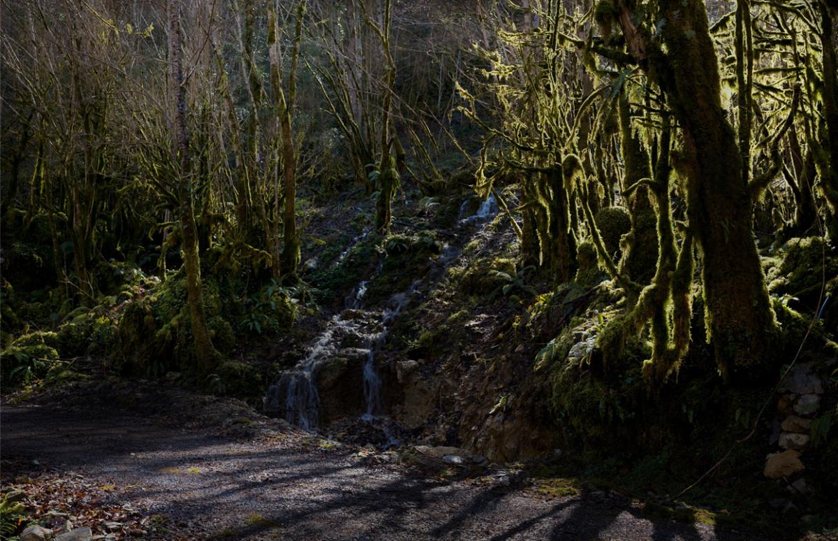 River 5 100 x 160 cm ©Nicolas Dhervillers