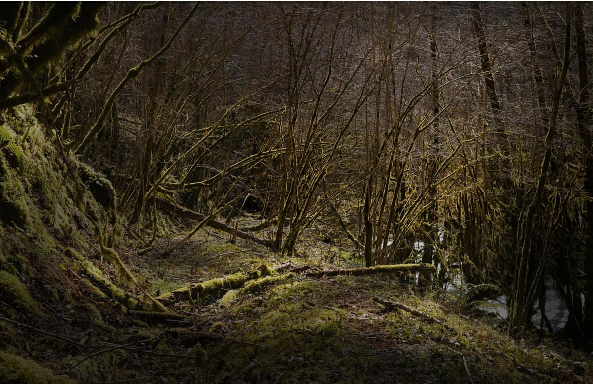 River 8 100 x 160 cm ©Nicolas Dhervillers